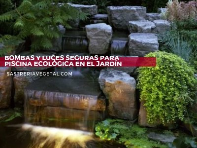 Piscinas Ecológicas- Diseño de Jardines