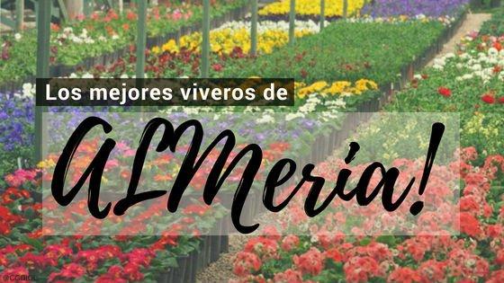 Almeria, Directorio de Viveros.