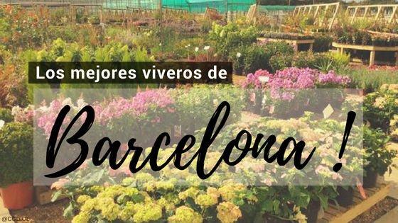 Viveros en Barcelona