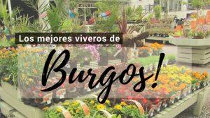 Burgos, Directorio de Viveros.