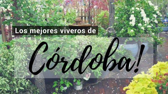 Córdoba, Directorio de Viveros.