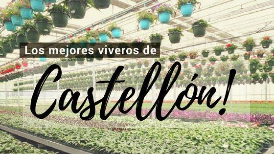 Viveros de Plantas en Castellón