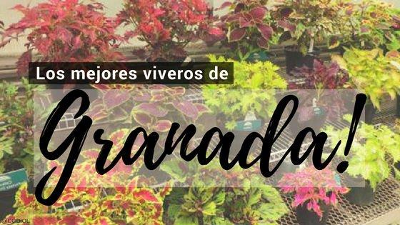 Granada, Directorio de Viveros.