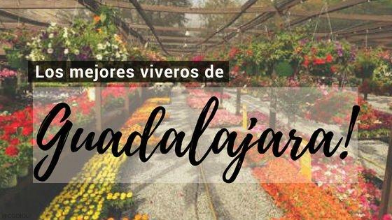Guadalajara, Directorio de Viveros.