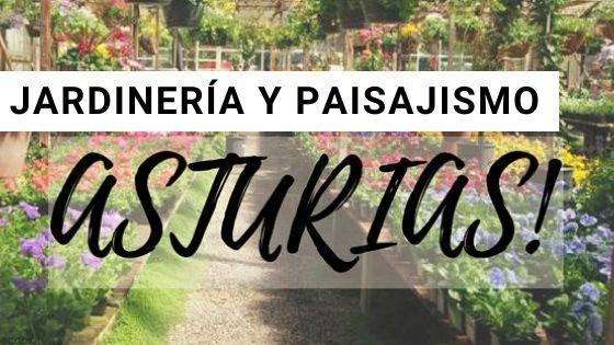 Jardinería en Asturias
