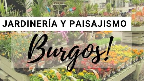 Jardinería en Burgos