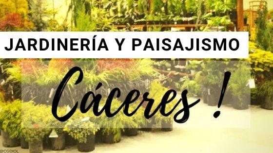 Jardinería en Cáceres