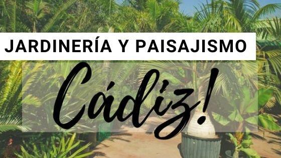 Jardineria en Cadiz