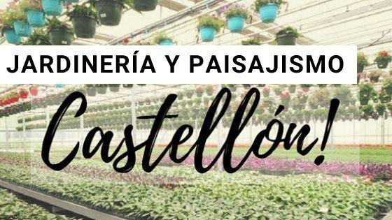 Jardinería en Castellon