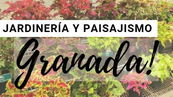 Jardinería en Granada