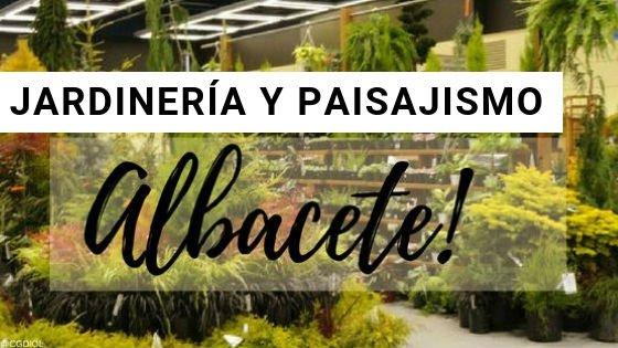 Jardineria en Albacete