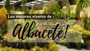 Viveros en Albacete
