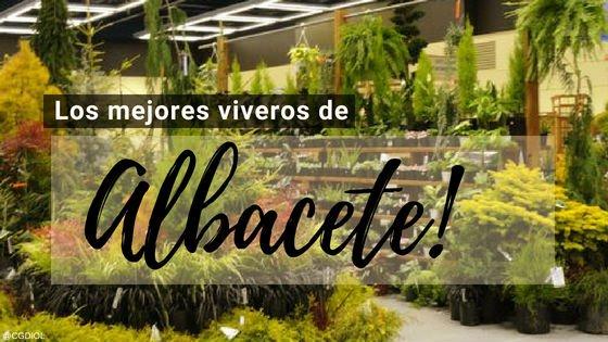 Viveros en Albacete | Jardineria y Paisajismo