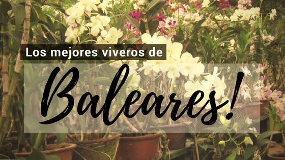 Baleares, Directorio de Viveros.