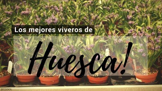 Viveros y Paisajistas en Huesca