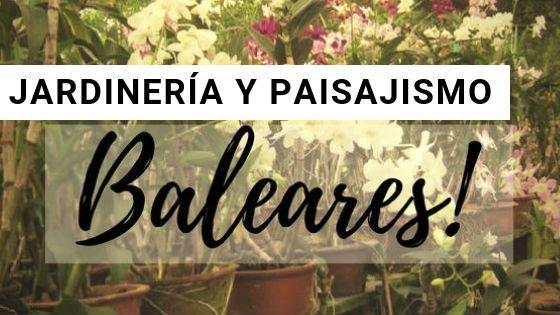 Jardinería en Baleares