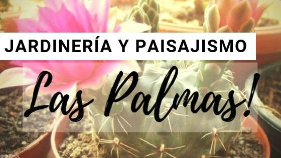 Las Palmas, Jardinería y Paisajismo