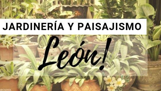 Paisajismo y Jardinería en León