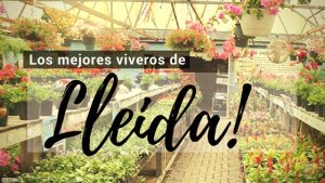 Lleida, Directorio de Viveros.