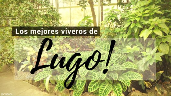 Lugo, Directorio de Viveros.