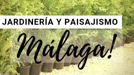Malaga Jardinería y Paisajismo