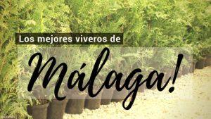Málaga, Directorio de Viveros.