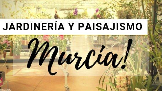 Murcia Jardinería y Paisajismo