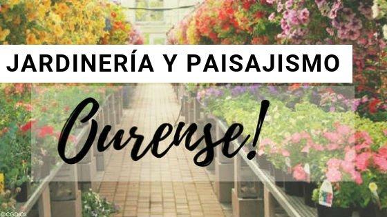 Ourense Jardinería y Paisajismo