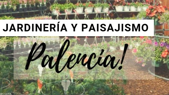 Palencia, Paisajismo y Jardinería