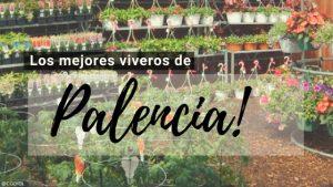 Palencia, Directorio de Viveros.