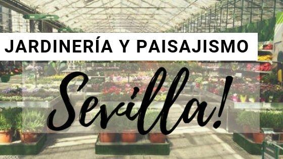 Sevilla Jardinería y Paisajismo
