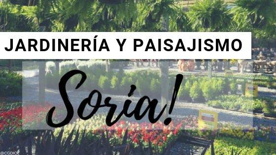 Soria Jardinería y Paisajismo