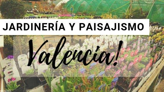 Valencia, Jardinería y Paisajismo