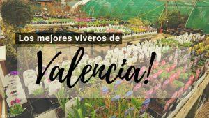 Valencia, Directorio de Viveros.