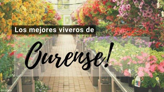 Viveros en Ourense, España.