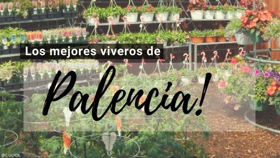 Viveros en Palencia, España.