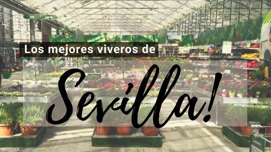 Viveros en Sevilla España.