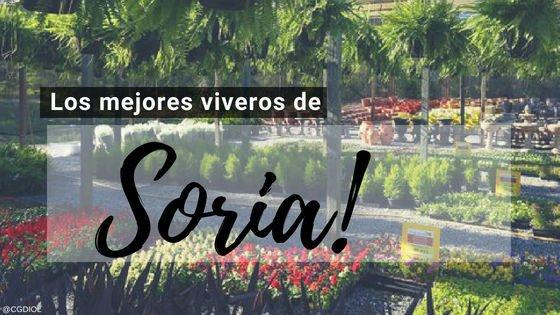 Viveros en Soria, España.