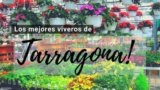 Viveros en Tarragona, España.
