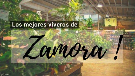 Viveros en Zamora, España.