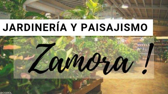 Zamora, Paisajismo y Jardinería