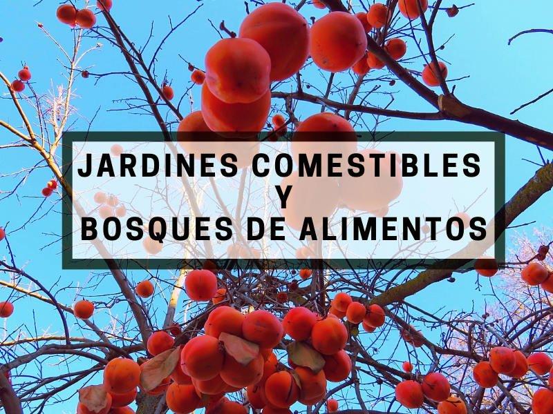 Diseño de Bosques y Jardines Comestibles Mediterráneos