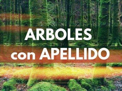 Arboles con Apellido en Jardineria y Paisajismo