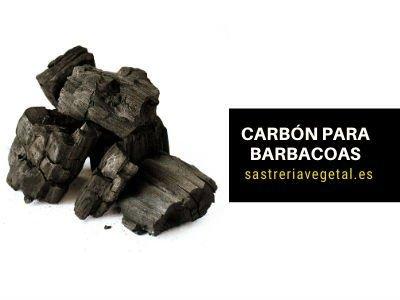 carbón para asados