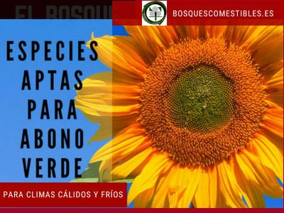 abono verde fertilizante organico