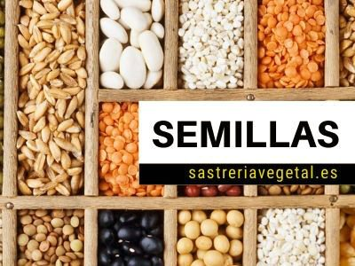 venta semillas
