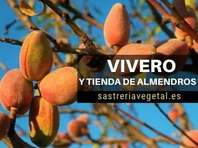 Vivero de Almendros Online