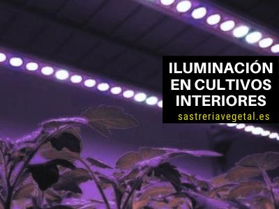 Iluminación en Cultivos Interiores